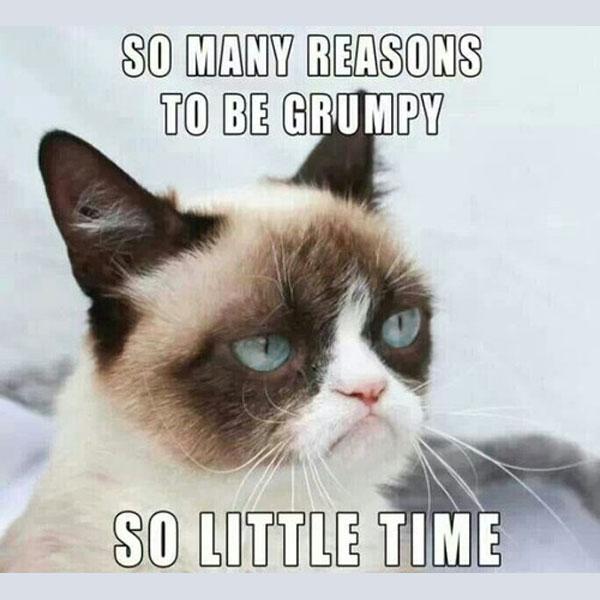 grumpy-cat-meme-00.jpg