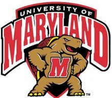 MadDog2020Terp